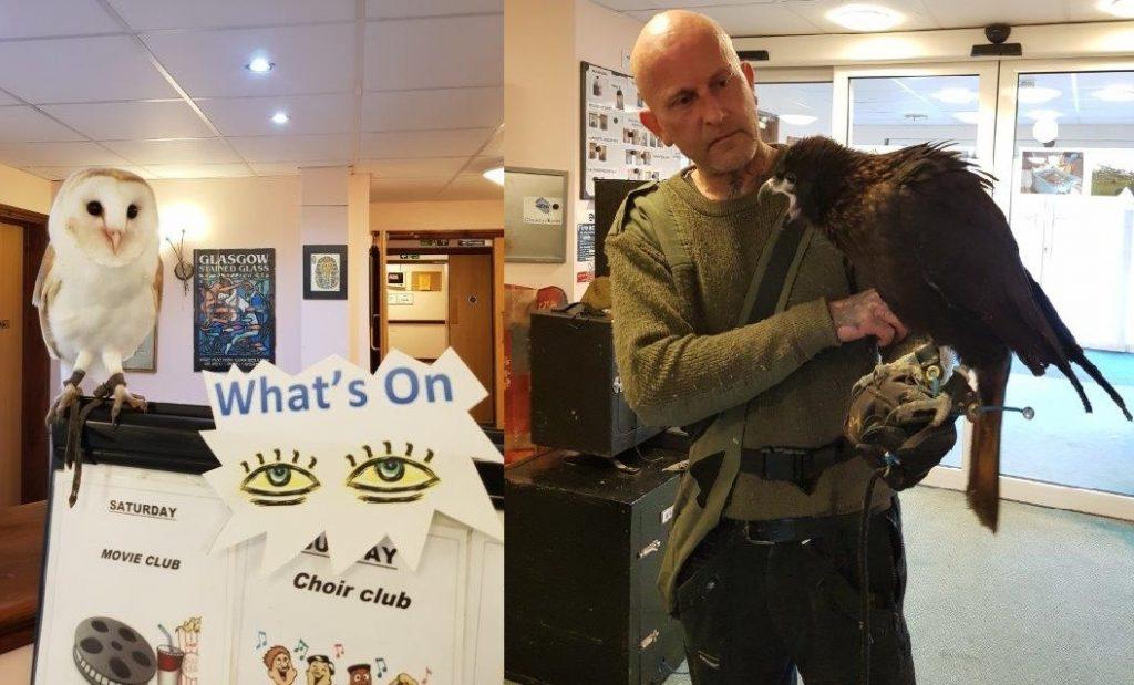 Birds of Prey visit Dorrington House Wells!