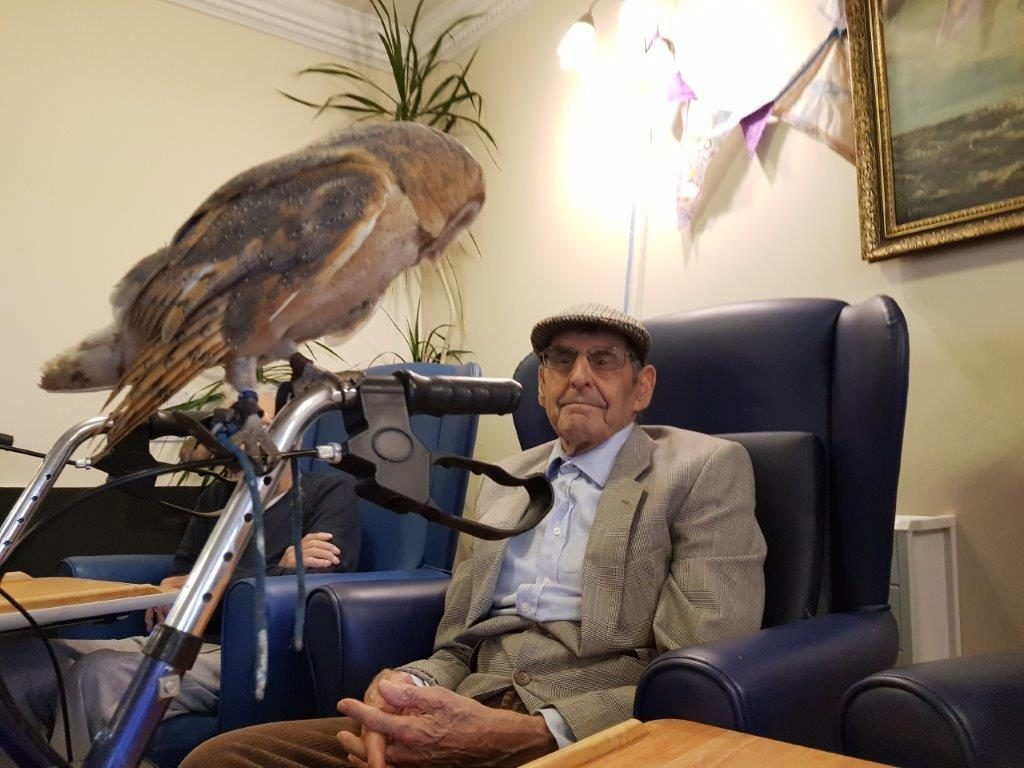 Here we have one of our residents Claude from our Birds of Prey visit at Dorrington House Wells!