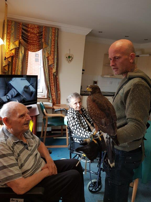 One of our residents Dougie having a close look at the Harris Hawk in front of him. From our Birds of Prey visit at Dorrington House Wells!