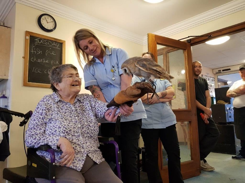 One of our residents Susan holding an owl. From our Birds of Prey visit at Dorrington House Wells!