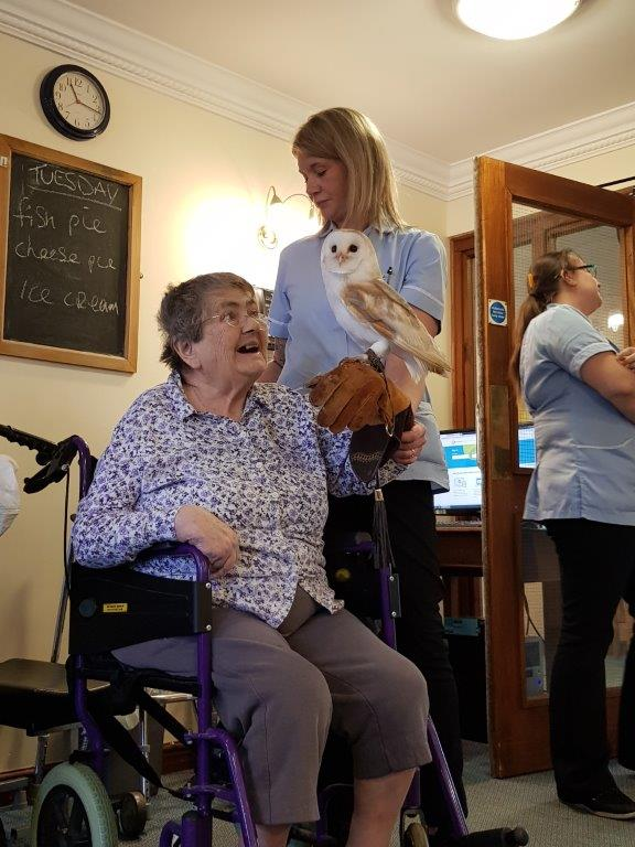One of our residents Susan holding an owl looking very happy! From our Birds of Prey visit at Dorrington House Wells!