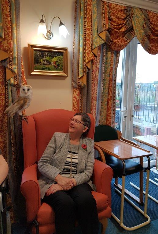 One of our residents Sylvia having a close look at the Owl in front of her! From our Birds of Prey visit at Dorrington House Wells!