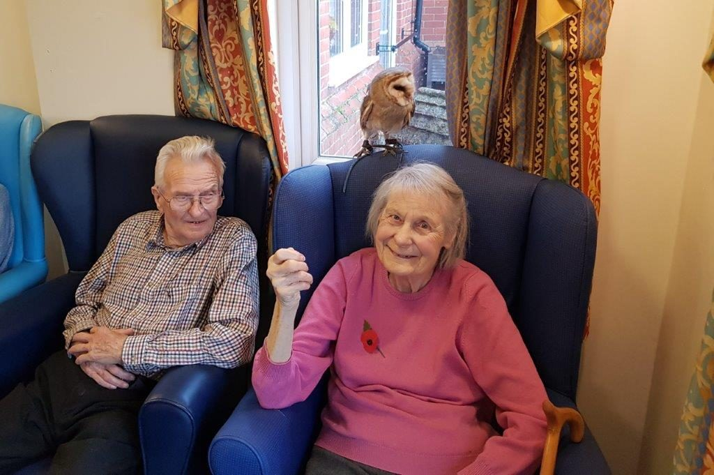 Residents;Freda and Stanley. As part of our Birds of  Prey visit at Dorrington House Wells!